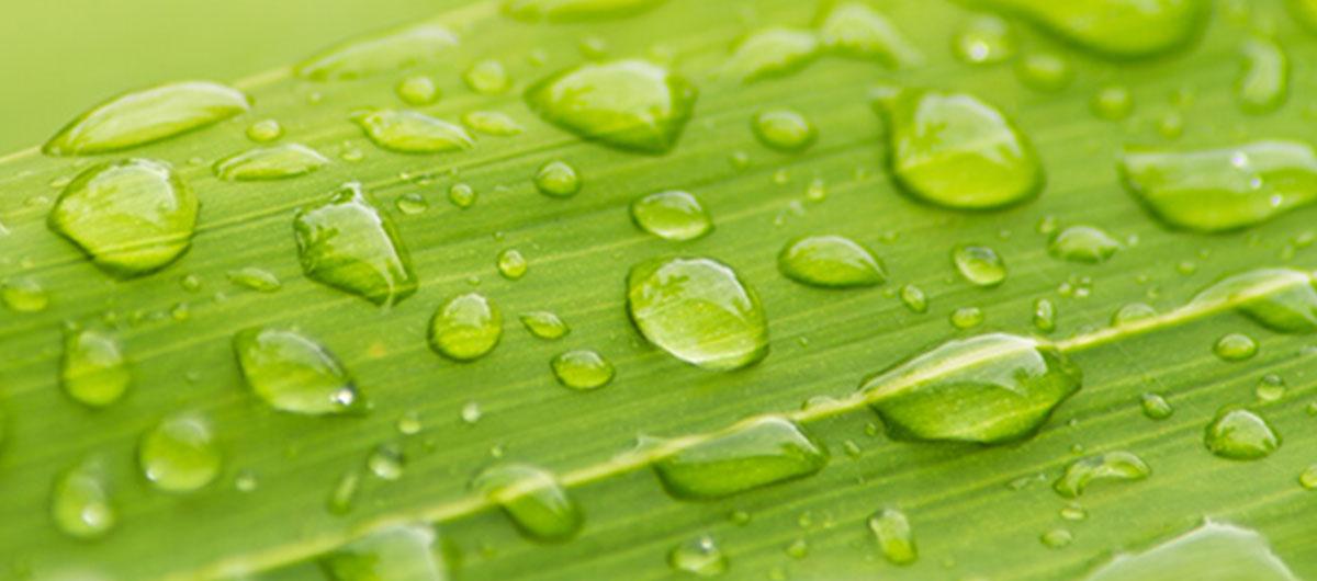 Overground Rainwater Harvesting Tanks | JFC Civils